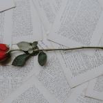 5 experiencias bibliófilas para impresionar a un gran amante de los libros